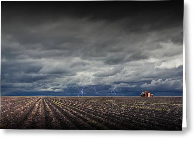 Lightning Photographs Greeting Cards - Lightning Storm over Field Furrows in Southeast Texas Greeting Card by Randall Nyhof