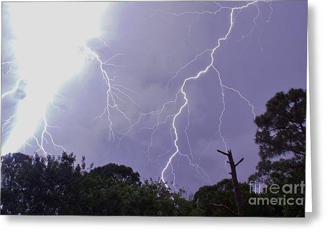 Lightning Photographer Greeting Cards - Lights Out Greeting Card by Lynda Dawson-Youngclaus