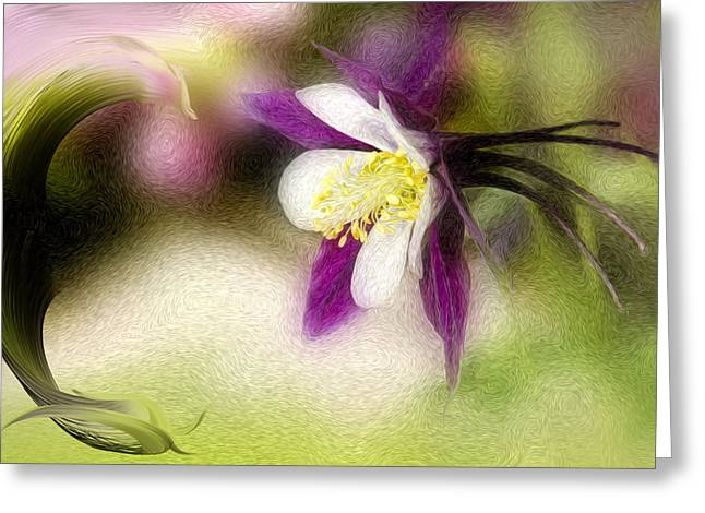 Oil Like Digital Greeting Cards - Like a Dove Greeting Card by K Powers  Photography