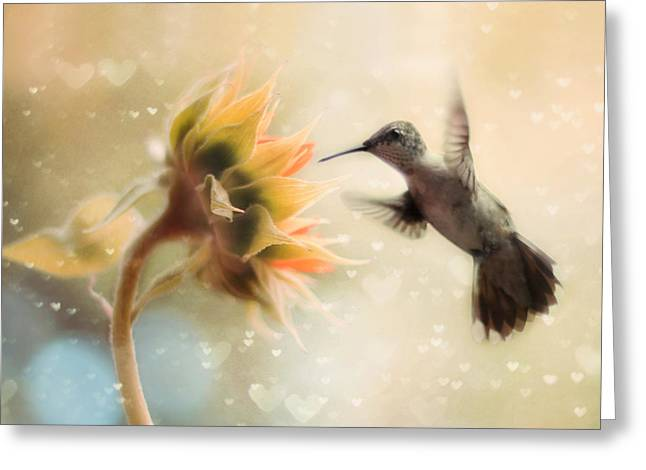 Hummingbirds Greeting Cards - Like a Moth To a Flame Greeting Card by Amy Tyler