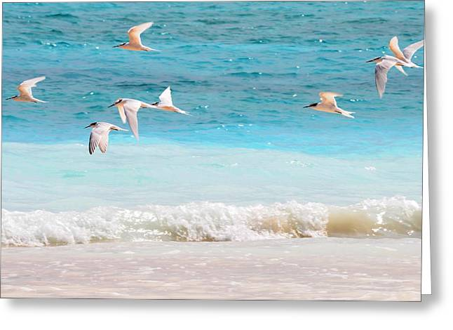 Air Element Greeting Cards - Like Birds in the Air Greeting Card by Jenny Rainbow