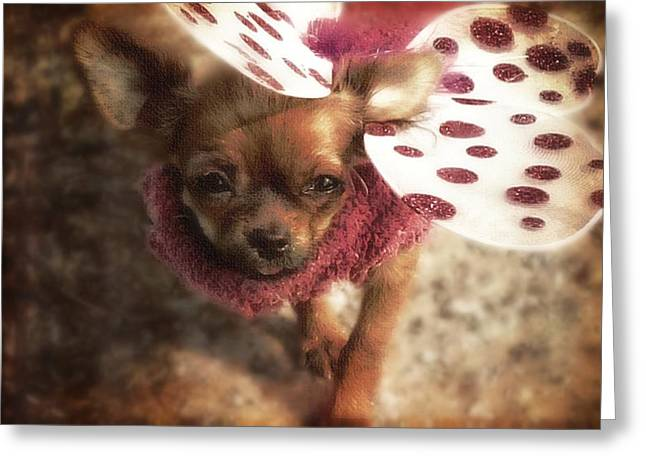 Puppies Greeting Cards - Lil Butterfly Greeting Card by Tisha McGee