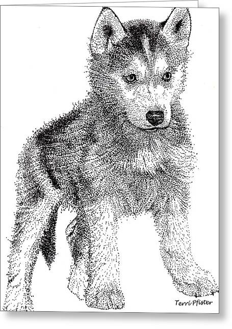 Husky Drawings Greeting Cards - Lil Husky Greeting Card by Terri Pfister