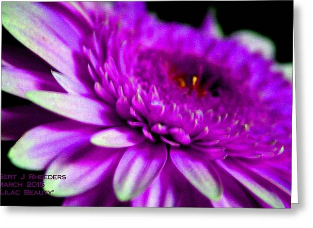 Commercial Photography Pastels Greeting Cards - Lilac Beauty H a Greeting Card by Gert J Rheeders