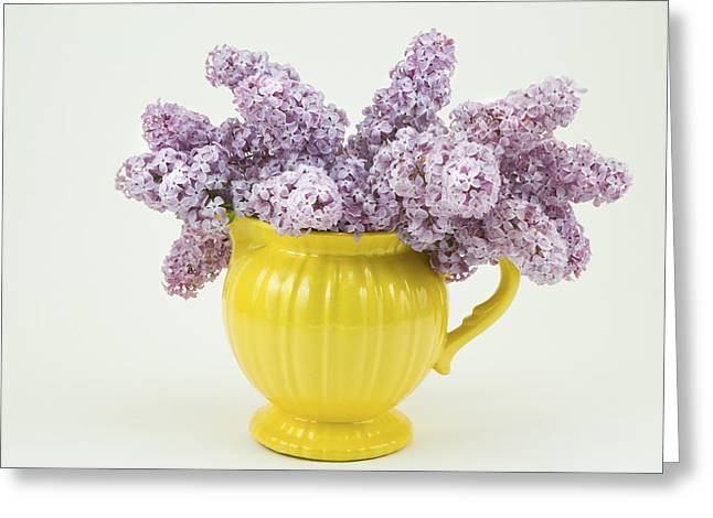 Lilac Flower Greeting Cards - Lilac Boquet - Yellow Vase Greeting Card by Keith Webber Jr