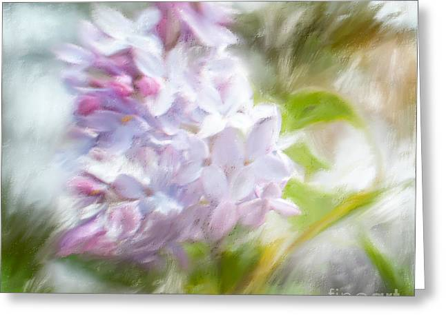 Lilac Pastels Greeting Cards - Lilac Impressions Greeting Card by Terri Creasy