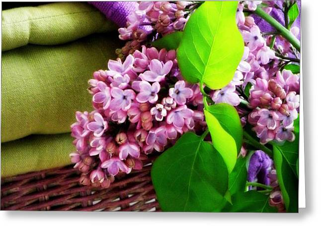 Lilac Still Life Greeting Card by Lainie Wrightson