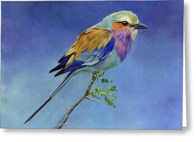 Lilacbreasted Roller Greeting Card by David Stribbling
