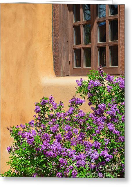 Catherine Window Greeting Cards - Lilacs and Adobe Greeting Card by Catherine Sherman