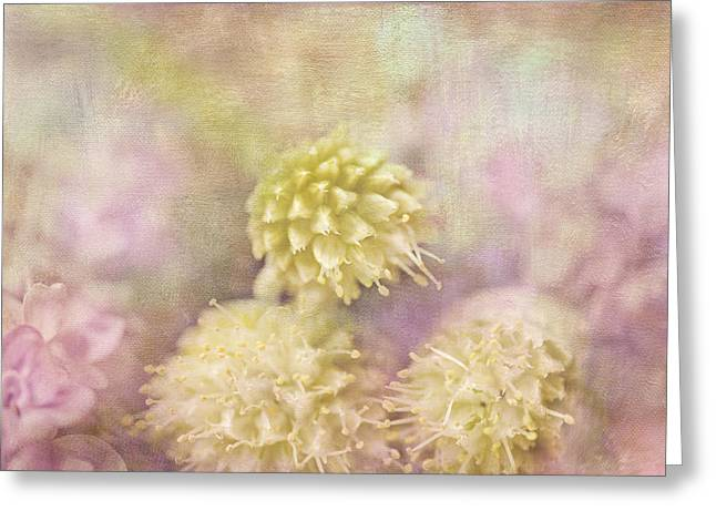 Texture Floral Greeting Cards - Lilacs and Onion Blossoms Greeting Card by Bonnie Bruno