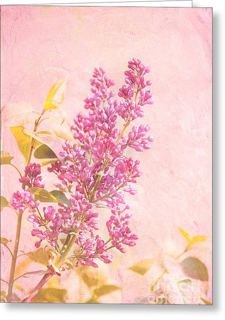 Texture Floral Greeting Cards - Lilacs in Pink Greeting Card by Kay Pickens