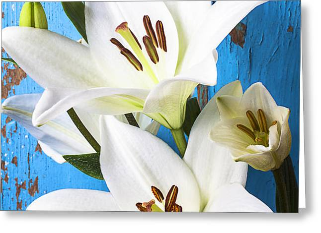 Lilies against blue wall Greeting Card by Garry Gay
