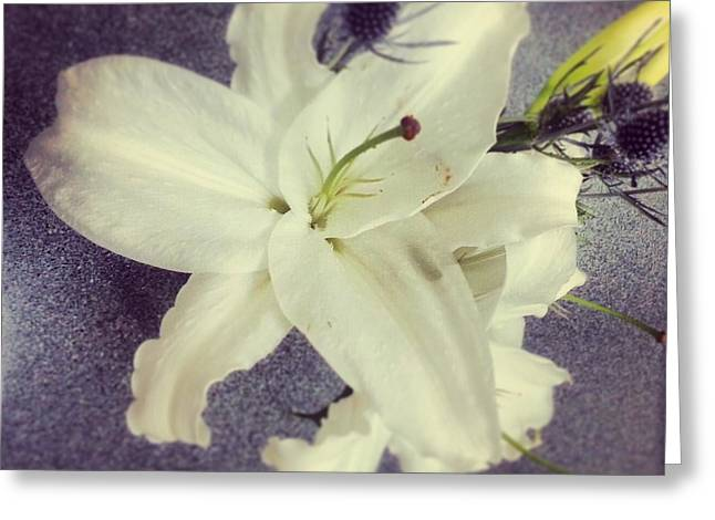 Lilies And Thistle Greeting Card by Heather L Wright