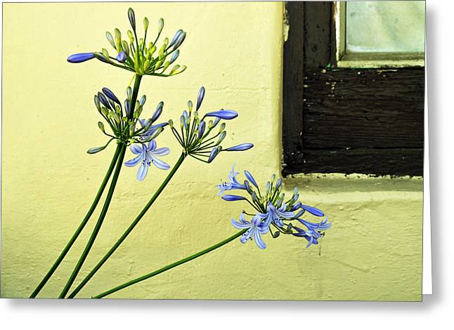 Mother Of Four Greeting Cards - Lilies in Town Greeting Card by Pamela Patch
