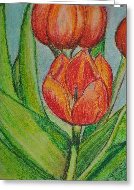 Water Lilly Drawings Greeting Cards - Lillies Greeting Card by Divya Singireddy