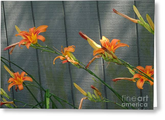 Day Lilly Greeting Cards - Lilies In The Breeze Greeting Card by Lyric Lucas