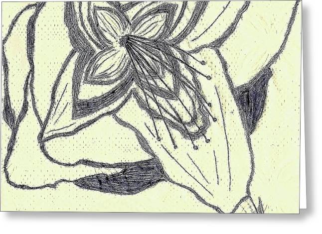 Ultra Modern Greeting Cards - Lilly Artistic Doodling Drawing Greeting Card by Joseph Baril