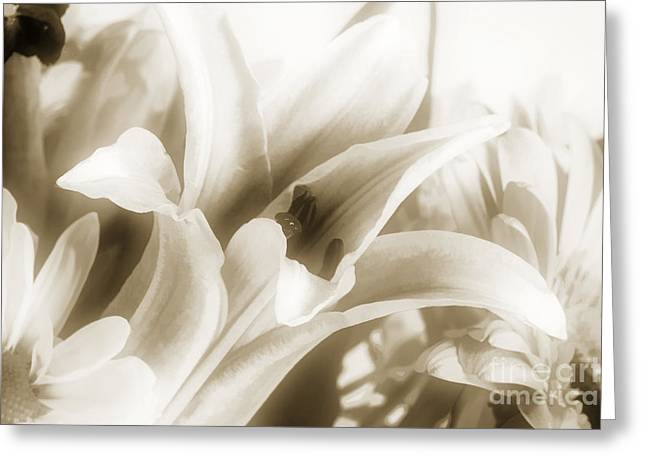 Flower Still Life Prints Greeting Cards - Lilly flower Pastel Painting in Sepia 3178.01 Greeting Card by M K  Miller