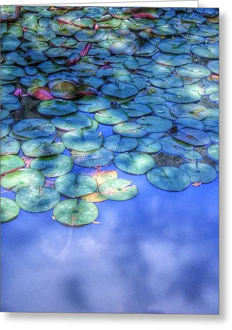 Lilly Pad Greeting Cards - Lilly Pond Blue  Greeting Card by Susanne  Swanson-Bernard