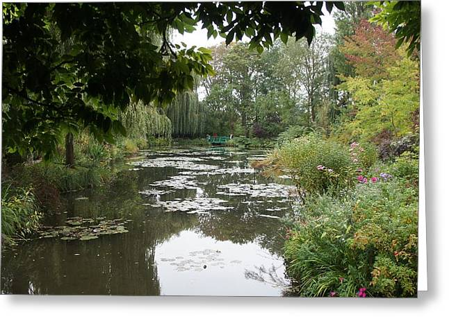 Lilly Pond II Greeting Card by Kristine Bogdanovich