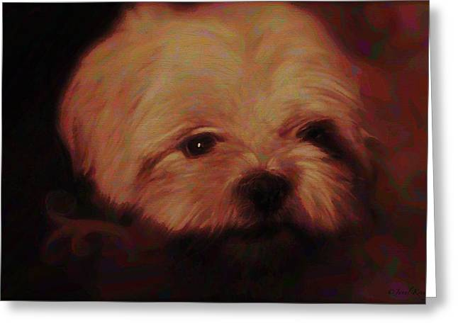 Puppies Mixed Media Greeting Cards - Lilly Puppy Greeting Card by Janal Koenig