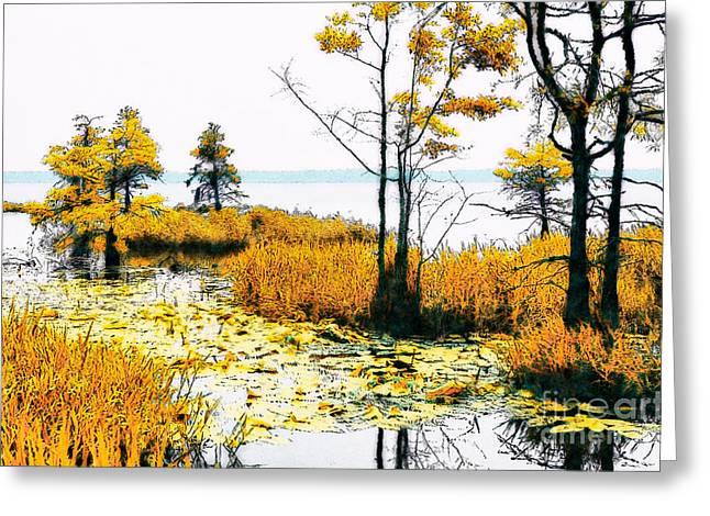 Cypress Tree Digital Art Greeting Cards - Lillypad Wonderland - North Carolina Coast II Greeting Card by Dan Carmichael