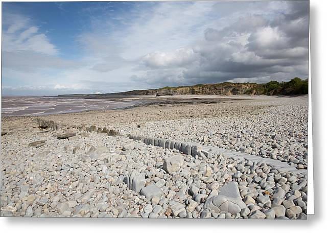 Lilstock Beach West Somerset England And Hinkley Point Nuclear Power Station  Greeting Card by Michael Charles