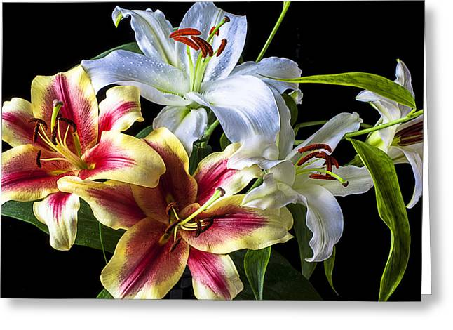 Yellow Leaves Greeting Cards - Lily bouquet Greeting Card by Garry Gay