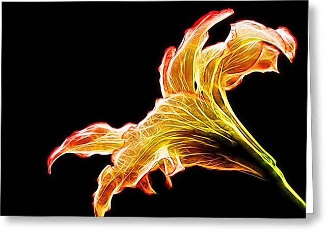 Creative Manipulation Digital Greeting Cards - Lily Glow Greeting Card by Judy Vincent