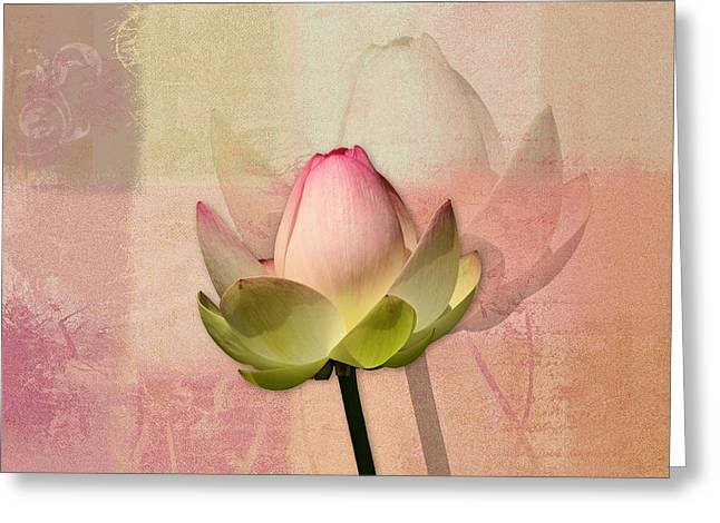Nenuphar Greeting Cards - Lily My Lovely - 01ac Greeting Card by Variance Collections