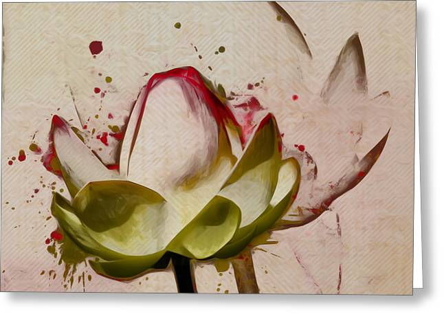 Nenuphar Greeting Cards - Lily My Lovely - a444csq Greeting Card by Variance Collections