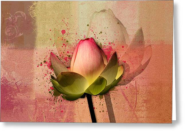 Nenuphar Greeting Cards - Lily My Lovely - s03d4 Greeting Card by Variance Collections