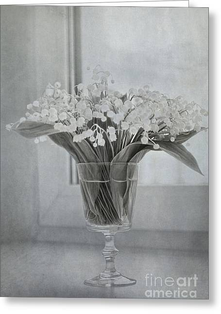 Glass Wall Greeting Cards - Lily of the valley Greeting Card by Elena Nosyreva