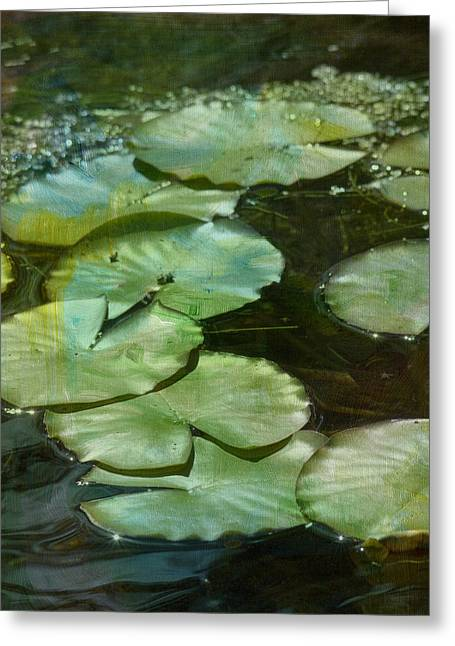 Lily Pad Greeting Cards - Lily Pads 2 Greeting Card by Rebecca Cozart