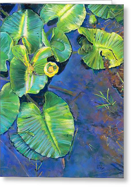 Birdseye Greeting Cards - Lily Pads Greeting Card by Nick Payne