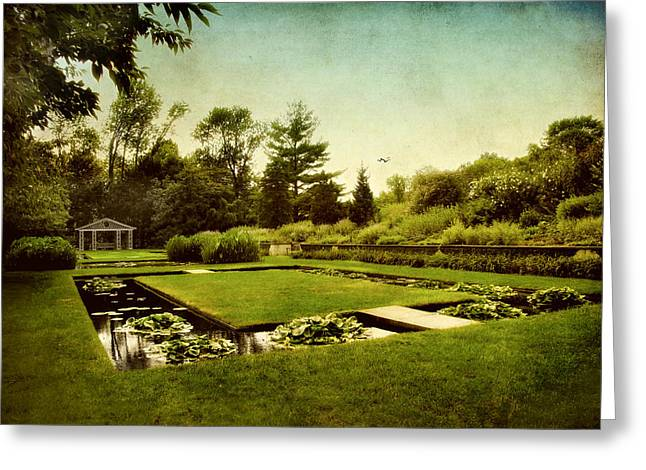 Summer Landscape Greeting Cards - Lily Pond Greeting Card by Jessica Jenney
