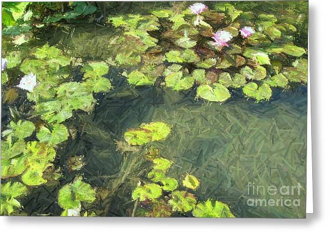 Day Lilly Greeting Cards - Lily Pond Greeting Card by Maureen J Haldeman