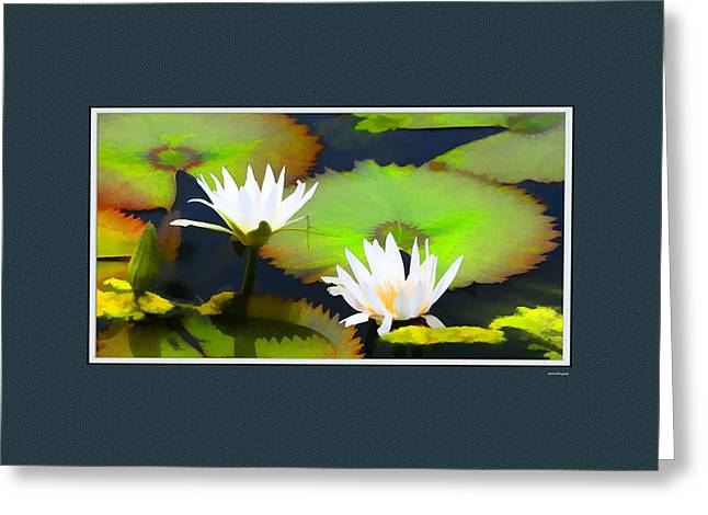Artistic Photography Greeting Cards - Lily Pond with digital mat Greeting Card by Tom Prendergast