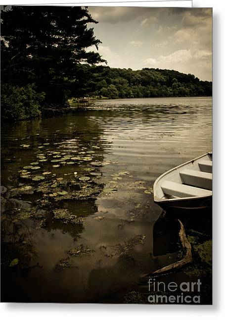 Peaceful Greeting Cards - Lilypads in the Lake Greeting Card by Amy Cicconi
