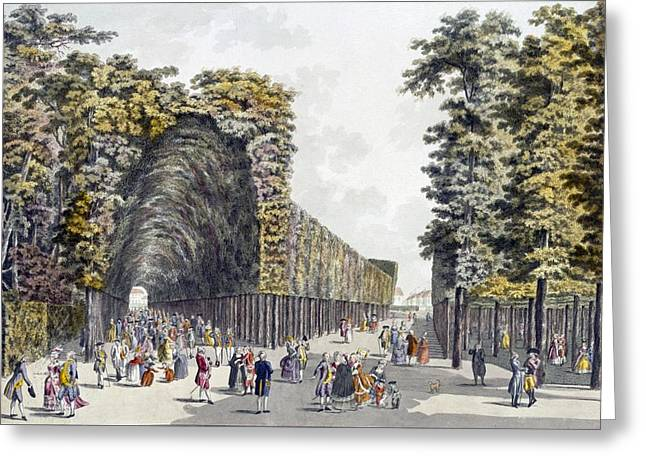 Pleasures Greeting Cards - Limegrove Walk, Augarten, Vienna, 1790s Greeting Card by Johann Ziegler
