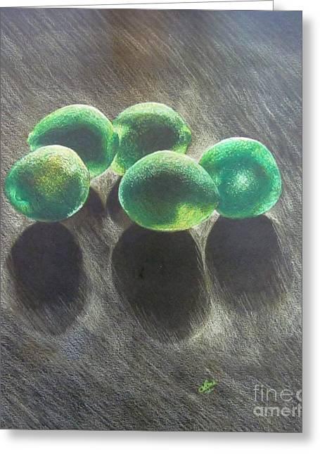 Backlit Drawings Greeting Cards - Limes Greeting Card by Elaan Yefchak