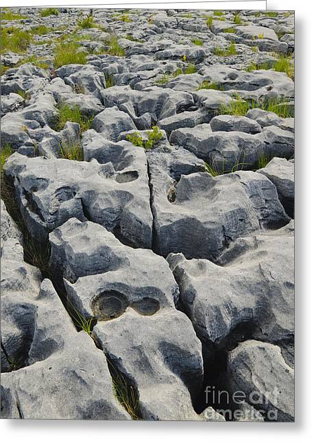 Science Greeting Cards - Limestone In The Burren Greeting Card by John Shaw
