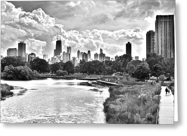 Chicago Bulls Greeting Cards - Lincoln Park Black and White Greeting Card by Frozen in Time Fine Art Photography