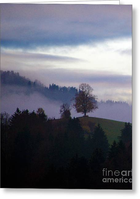 Thick Fog Greeting Cards - Linden Berry Tree and Fog 2 Greeting Card by Susanne Van Hulst