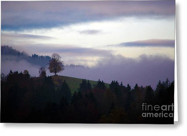Thick Fog Greeting Cards - Linden Berry Tree and Fog Greeting Card by Susanne Van Hulst