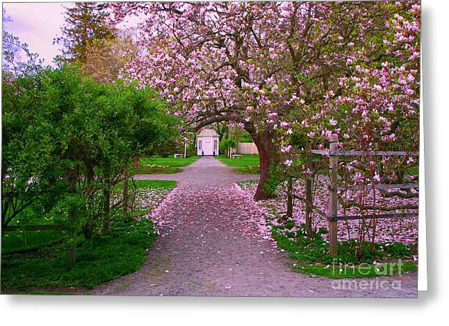 New England Photographs Greeting Cards - Linden Place Bristol RI Greeting Card by Tom Prendergast