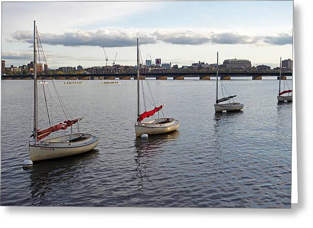 Charles River Greeting Cards - Line of boats on the Charles River Greeting Card by Toby McGuire