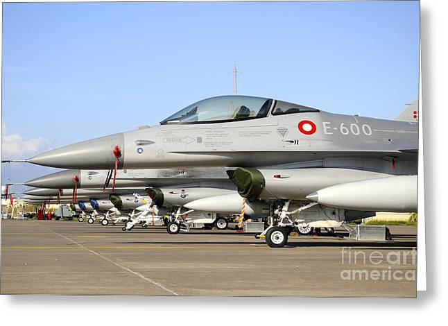 Danish Military Greeting Cards - Line-up Of F-16a Mlu Of The Royal Greeting Card by Riccardo Niccoli