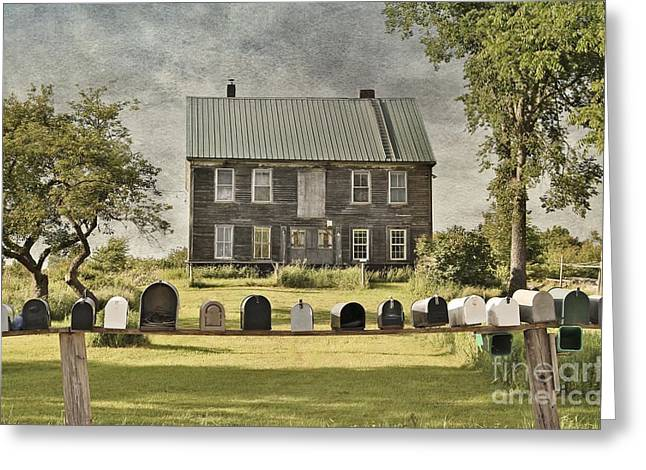 Rural Maine Roads Greeting Cards - Lined-Up Greeting Card by Karin Pinkham