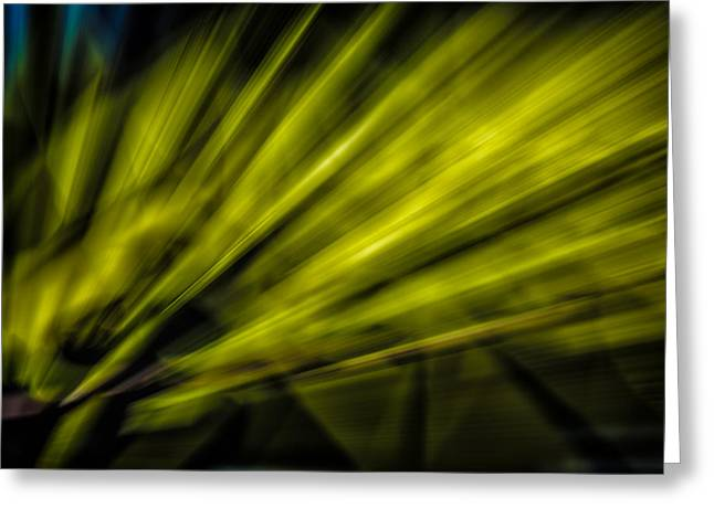 Abstract Style Greeting Cards - Lines 2 Greeting Card by Todd and candice Dailey